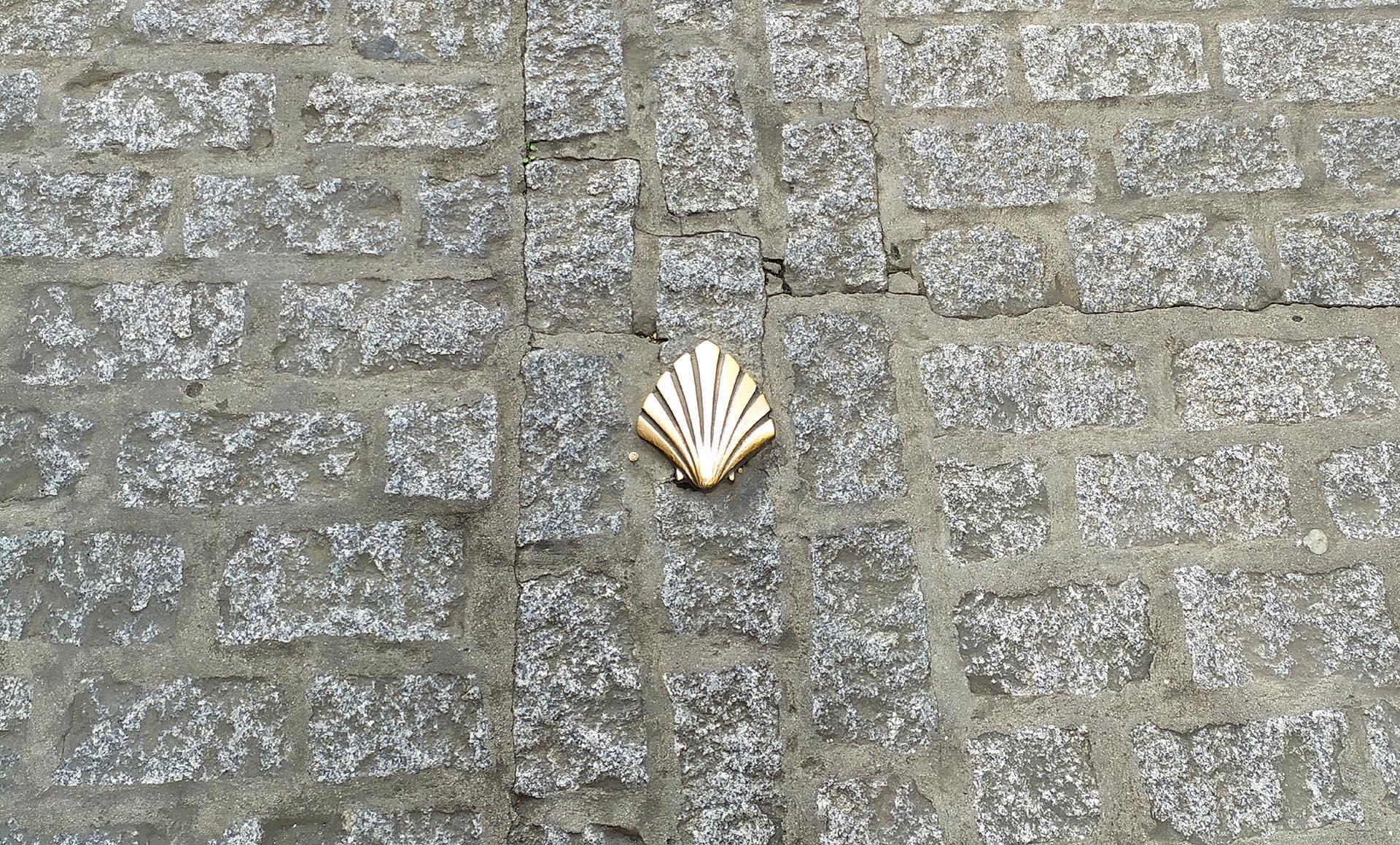 Concha bronce. Camino de Santiago